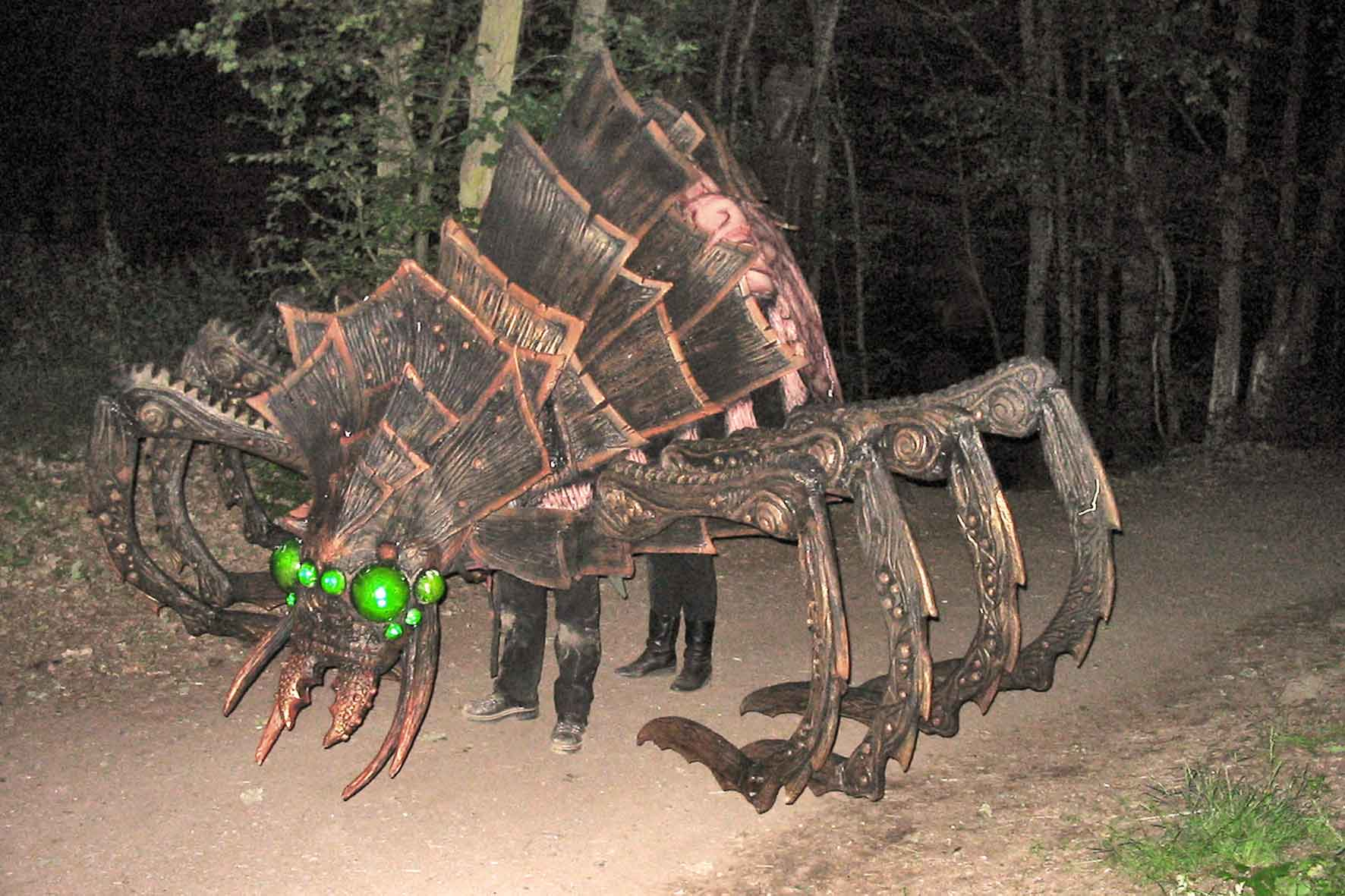 Real life giants spider - photo#9